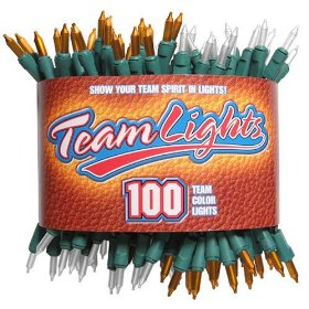 Teamlights orange and white decorative light string in sports package