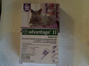 Bayer Advantage II Purple 4-Month Flea Control for Cats 9+ lbs.